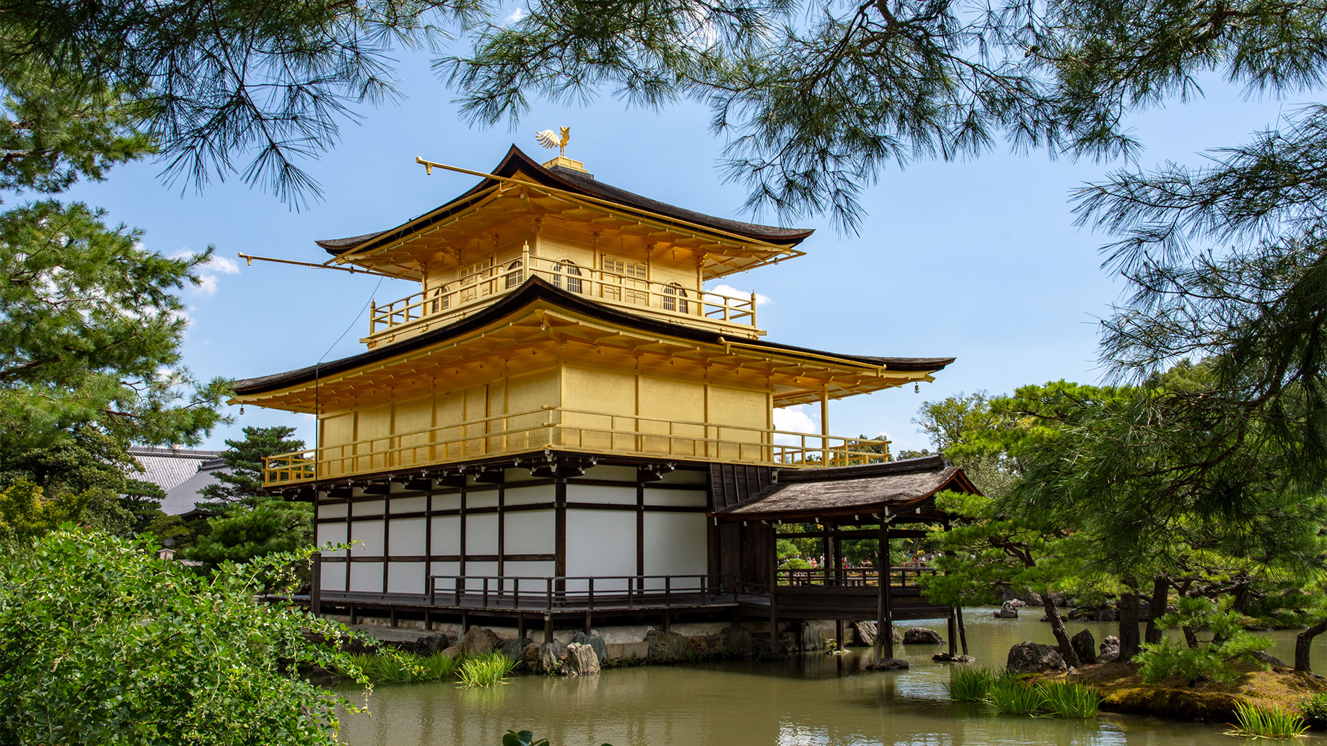 Kinkaku-ji (The Golden Pavilion) Kyoto